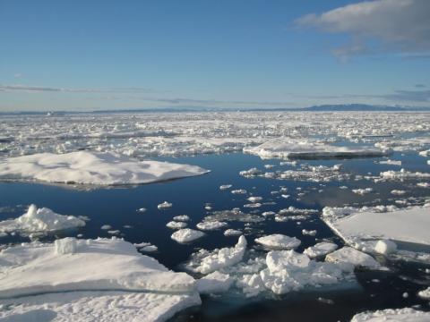 arctic-seaice