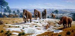 PLEISTOCENE-WOOLLY-MAMMOTH