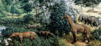 miocene-animals-2