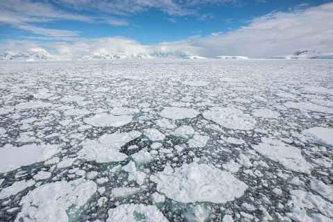 antarctic-sea-ice-photo