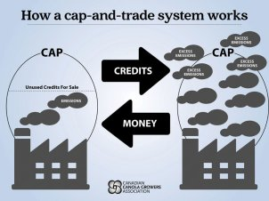 What is Cap and Trade? — Uplift