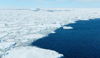 antarctic-sea-ice-zanowski-835px