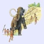 clovismammoth