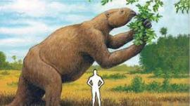 giant-sloth